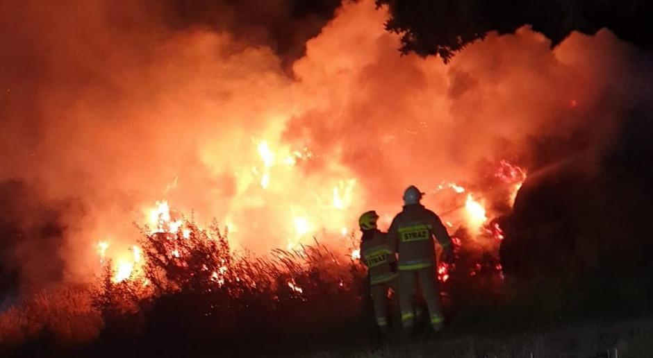 Nocny pożar sterty słomy