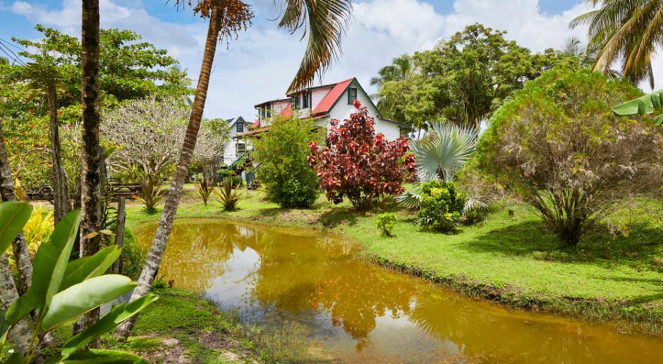 Prezydent Surinamu apeluje do holenderskich rolników, aby osiedlali się w jego kraju