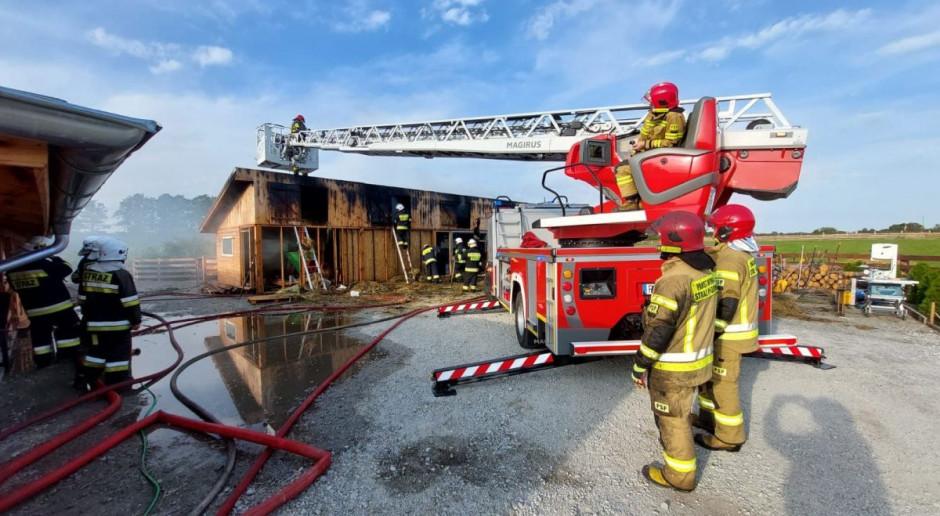 Płonęła stodoła i alpakarnia