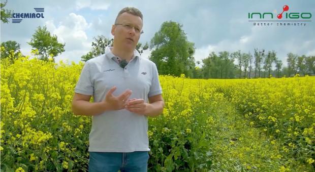 Jesienne zabiegi w rzepaku - Regulacja i ochrona fungicydowa