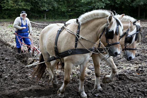 Polscy rolnicy są za wyjściem z UE?