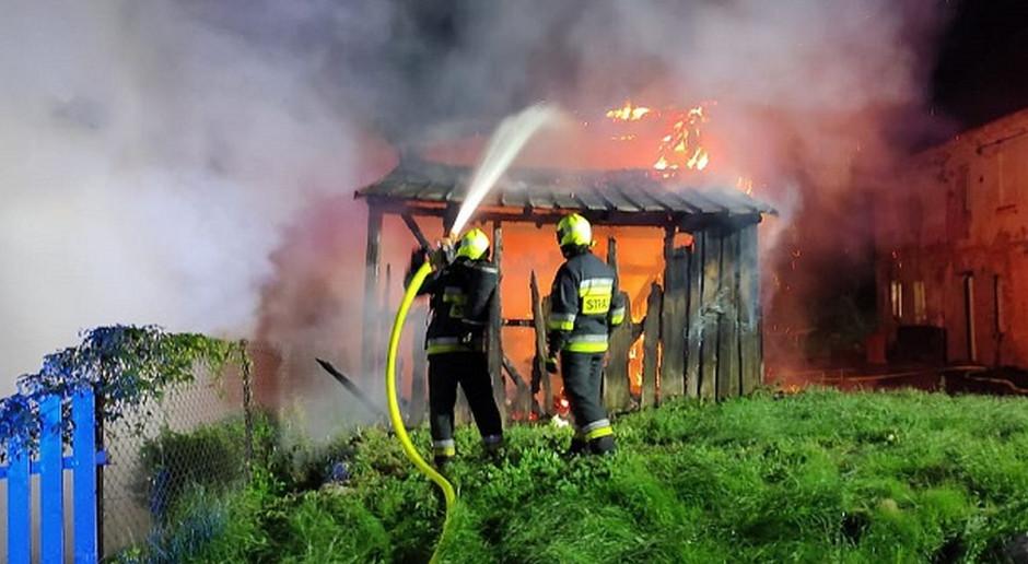 Podpaliła własny budynek - zginął pies