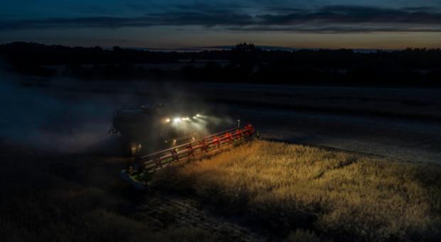 Coceral: Wrześniowa prognoza zbiorów zbóż i rzepaku w UE + Wielka Brytania