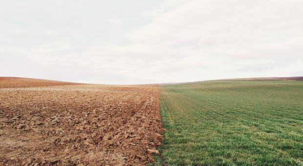 Polexit a polskie rolnictwo