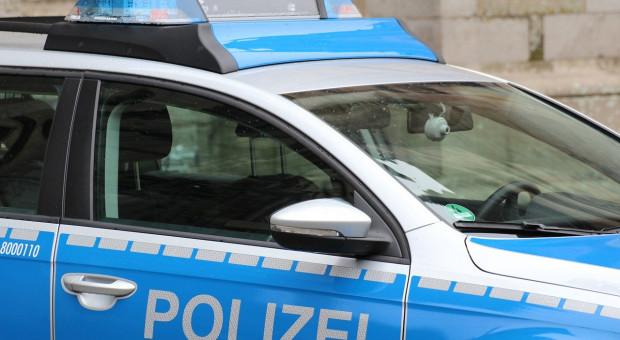 Niemcy: Policja znajduje kolejne 600 martwych świń na opuszczonej farmie