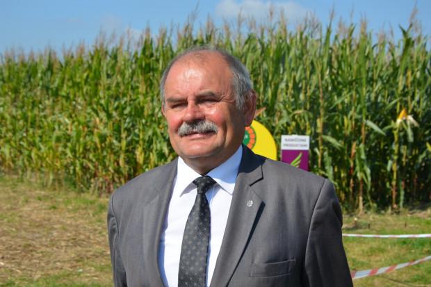 Prof. Michalski: Raczej stawiać na odmiany kukurydzy o FAO ok. 230