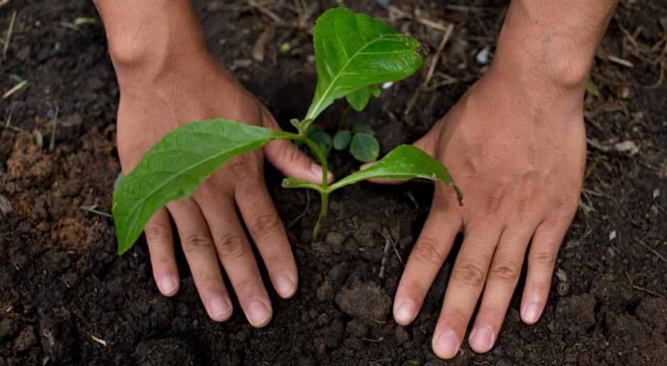 Nestlé wesprze rolników realizujących praktyki rolnictwa regeneracyjnego