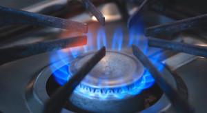 Ceny za użycie gazu w gospodarstwach domowych podskoczyły w górę