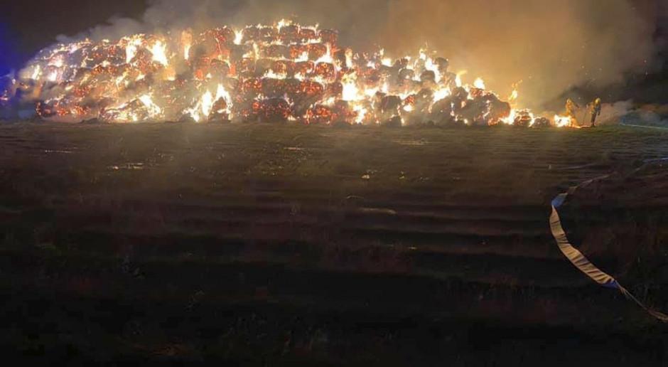Wielki pożar sterty słomy w Wielkopolsce