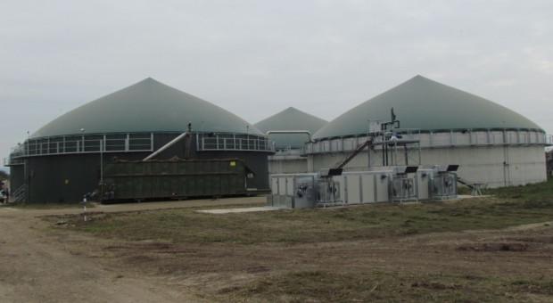 Goodvalley: Biogazownie pokrywają w 100 proc. nasze zapotrzebowanie na energię elektryczną