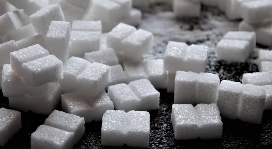 Kowa: szacunki wskazują na możliwy wzrost produkcji cukru rok do roku o 100 tysięcy ton