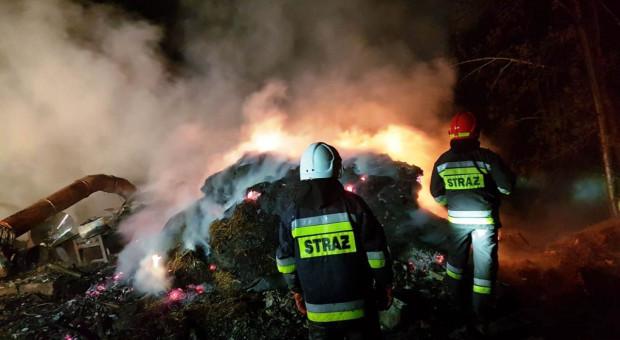 Pożar strawił budynek, zwierzęta i maszyny