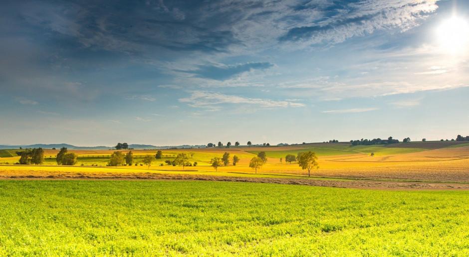 KOWR utworzył trzy Ośrodki Produkcji Rolniczej