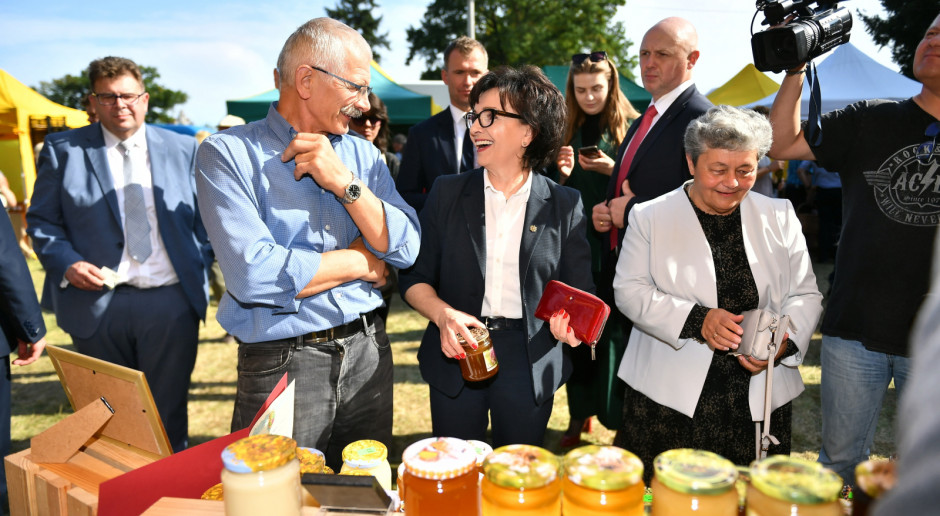 Witek: Jesteśmy drugim parlamentem na świecie z własną pszczelą pasieką
