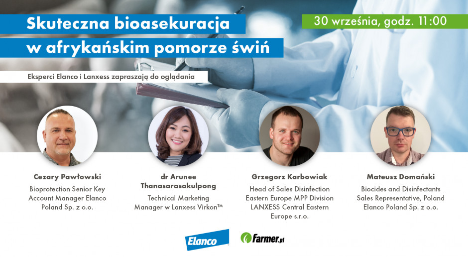 Skuteczna bioasekuracja ferm trzody – webinarium Farmera już w czwartek!