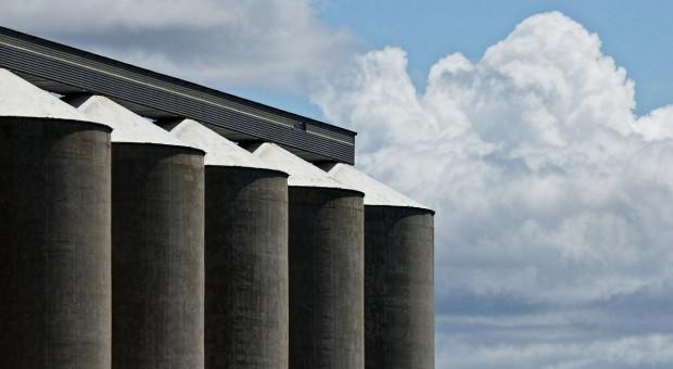 Duży eksport ukraińskiej pszenicy przy krytycznie niskich państwowych zapasach zbóż