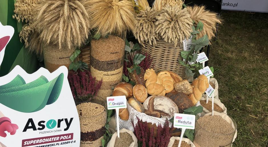 Tegoroczny start zbóż ozimych w ocenie Danko