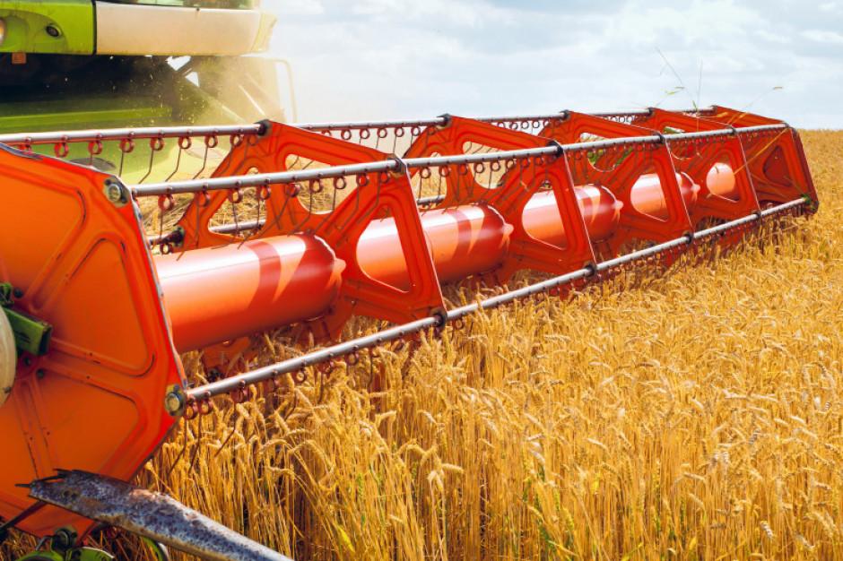 Znaczne wzrosty i rekordy cen zbóż na paryskiej giełdzie