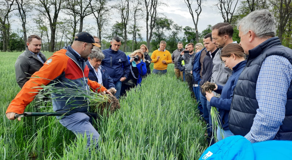 Top Farms: Biologizacja to odpowiedź na ekoschematy