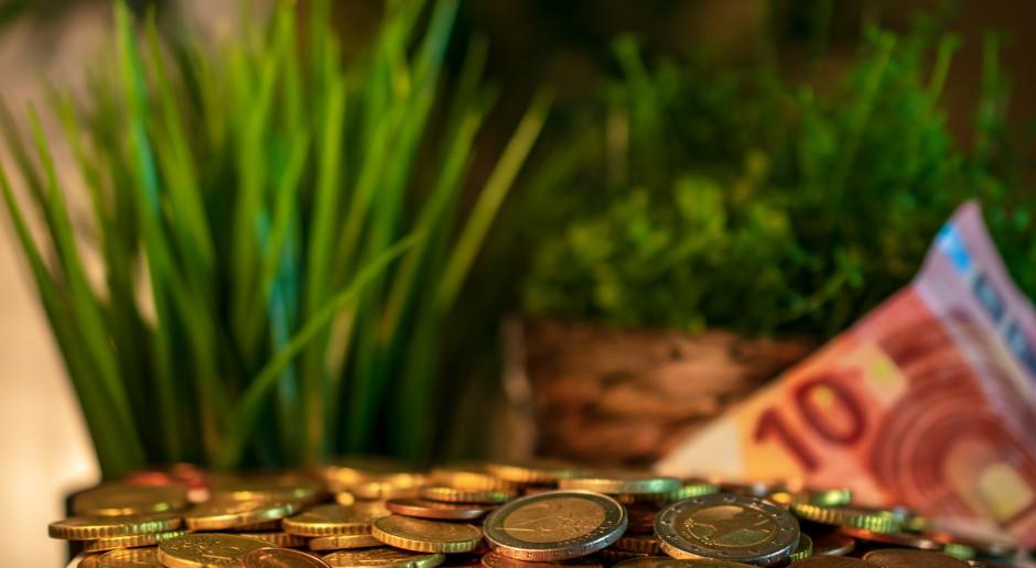 Ile w 2021 roku na płatności związane z produkcją?
