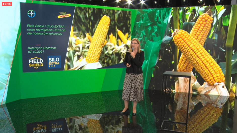 Dwa nowe programy hodowlane mają wytypować najlepsze w danym segmencie odmiany Fot. prtcreen