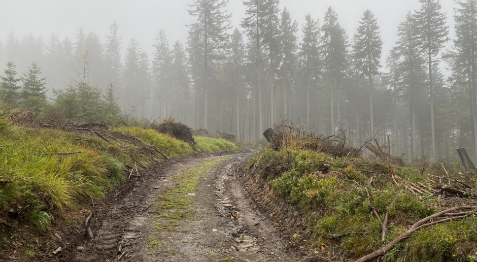 Prognoza pogody 12 i 13 października