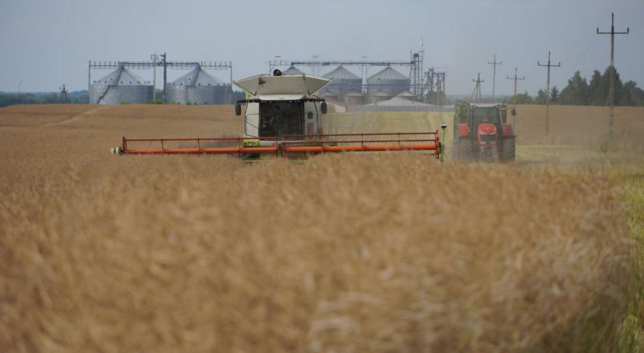 Jak wyglądały zbiory rzepaku 2021 - żniwa w gospodarstwie Agro-Farm, cz.1