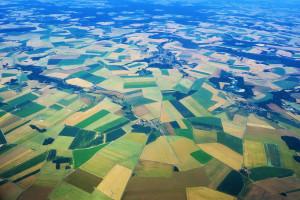 Francja: Nowe prawo ma wzmocnić pozycję rolników