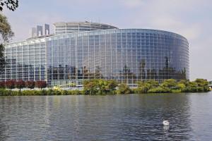 """Parlament Europejski za strategią """"Od pola do stołu"""""""