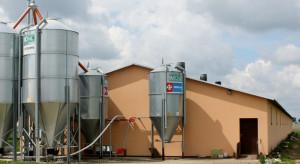 GLW w sprawie dostosowania do wymogów bioasekuracji dla producentów trzody